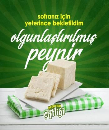 Olgunlaştırılmış Peynir