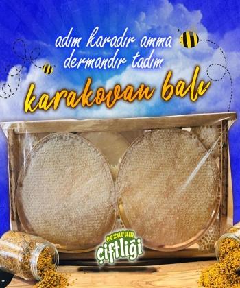 Organik Karakovan Balı